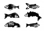 COLLECTION_POISSONS_1